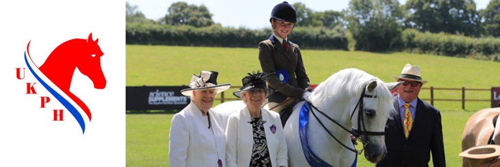 UK Ponies & Horses